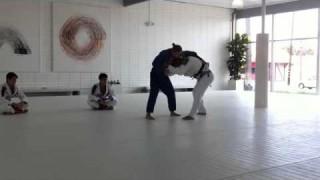 Rhonda Rousey rolling with BJ Penn (Judo vs BJJ)