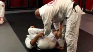 Rolling Session with Xande Ribeiro and Leandro Lo