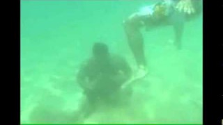 Xande And Saulo Ribeiro Underwater Conditioning Training in Hawaii