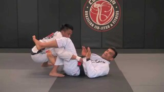Sweep & Arm Bar From Opponents Miragaia Pass – Cobrinha