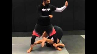 Fabricio Werdum New Training Method BJJ Chi