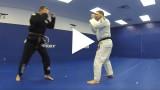 Standing Jiu Jitsu – Ricardo Almeida