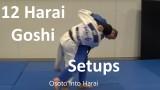 12 must know Harai goshi setups from Matt DAquino