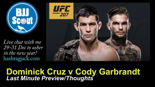 BJJ Scout: Dominick Cruz v Cody Garbrandt Mini-Preview/Thoughts