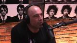 Joe Rogan Talks Pro BJJ