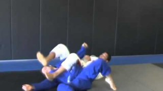 Armbar While in Spider Guard with Andre Galvao