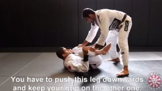 Leandro Lo – Torreada Pass from BJJ Library Seminar