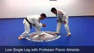 Low Single Leg- Flavio Almeida