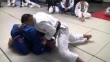 Judo Turtle Attacks for BJJ