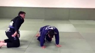 Turtle Sweeps, Reversals, Return to Guard