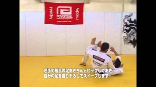 Arm Drag to Flying Armbar- Dave Camarillo