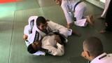 Butt Flop Pass- Rodolfo Vieira