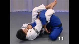 Closed guard armlock with the lapel