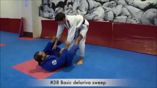 De la Riva guard basic Sweep