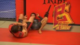 Leg locks from the standing position