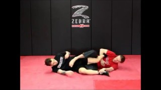 Basic ankle lock