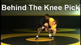 Behind The Knee Pick