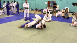 Turtle Position Into Kata Gatame