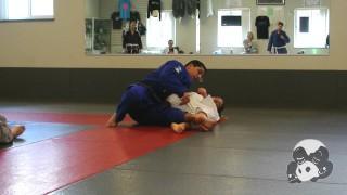 Folding Pass Details – Nelson Puentes