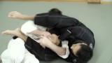 Aikido vs. Jiu Jitsu Sparring – Roy Dean