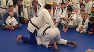 Armbar from Turtle – Renzo Gracie