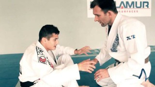 Butterfly Guard Sweep to Mount – Caio Terra