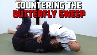 Countering the Butterfly Sweep – Stephan Kesting
