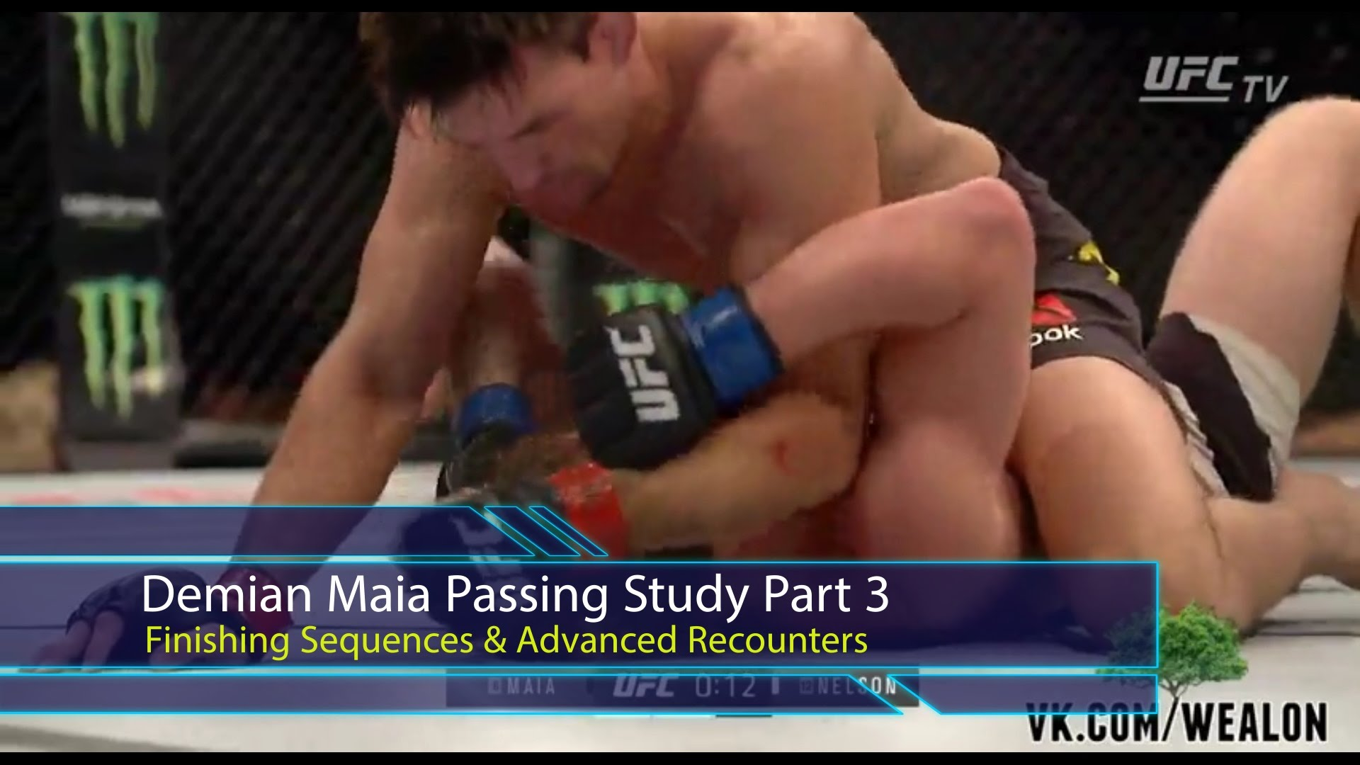 Demian Maia Finishing Sequences & Advanced Recounters – BJJ Scout