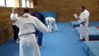 Special Judo Fitness Test