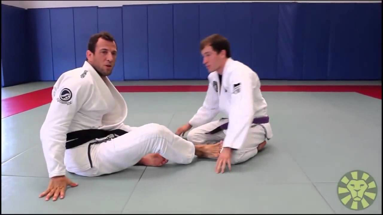 Turtle Guard Transitions and Recovery -Eduardo Telles