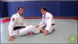 Turtle Guard Transitions and Recovery – Eduardo Telles