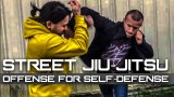Street Jiu-Jitsu – Striking to Takedown Technique BJJ