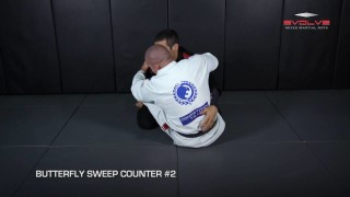 3 Essential Butterfly Sweep Counters – Evolve's Teco Shinzato