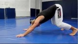 Simple Conditioning Workout – Jiu-Jitsu Brotherhood