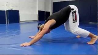Simple Conditioning Workout – Jiu-Jitsu Brotherhood