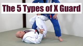 5 Types Of X Guard – Stephan Kesting