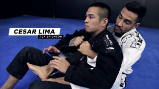 Arm Bar from Back Control – Cesar Lima