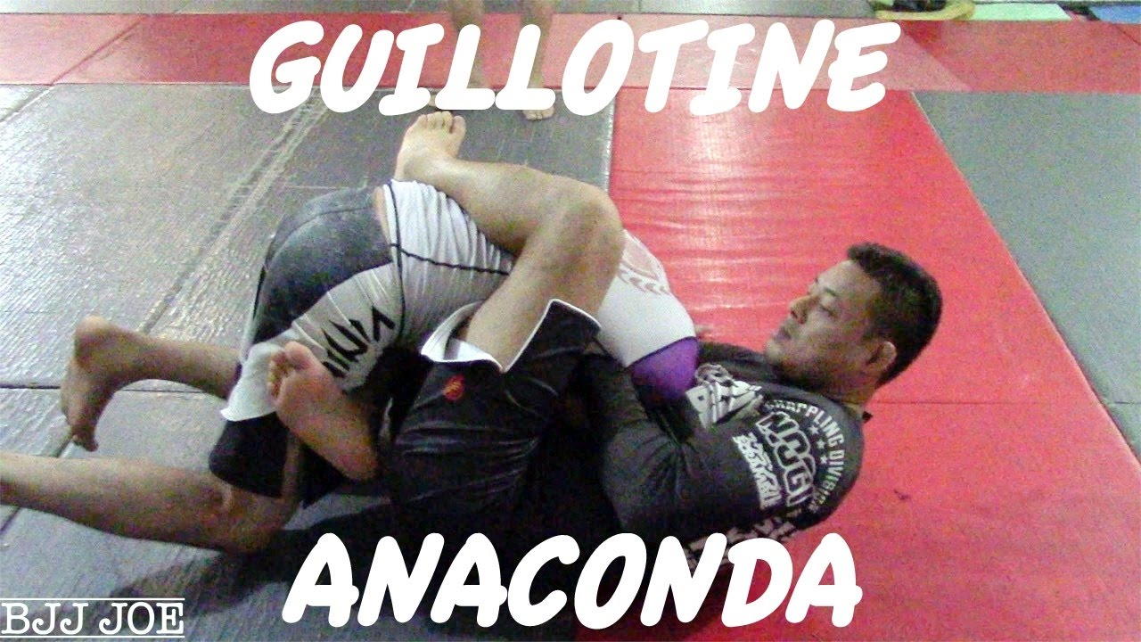 Guillotine Options: Guillotine to Anaconda to Mounted Guillotine -Rodrigo Kim