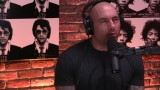 Joe Rogan Debates Which Is The Best Martial Art With A Scientist