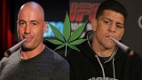 Michael Bisping goes off on Joe Rogan & Nick Diaz for forcing people to agree that weed is good