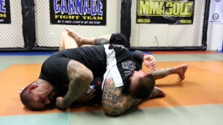 straight armlock from side control