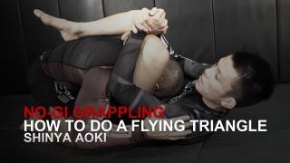 Shinya Aoki's Flying Triangle   Evolve University