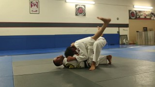 Butterfly/Elevator Sweep from Falcon Guard by Joel Bouhey