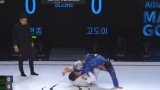 Matheus Godoy hits a dope kneebar from worm guard