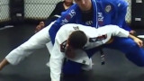 Demain Maia Explaining Some Turtle Guard Sweep Concepts