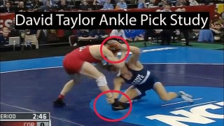 David Taylor Ankle Pick Study