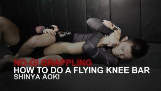 Shinya Aoki's Flying Knee Bar | Evolve