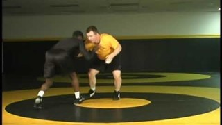 Crotch Lift To Gut Wrench –  Cary Kolat