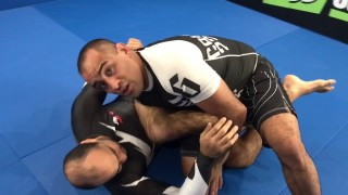 Killing The Knee Shield by Yuri Simoes