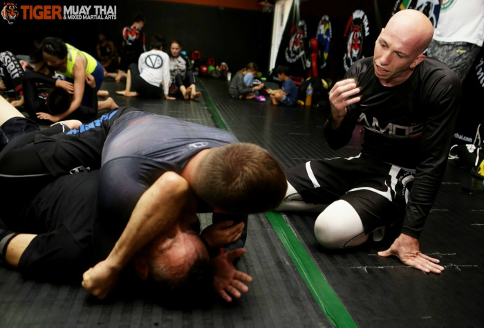 How To Ask The Right Questions in BJJ